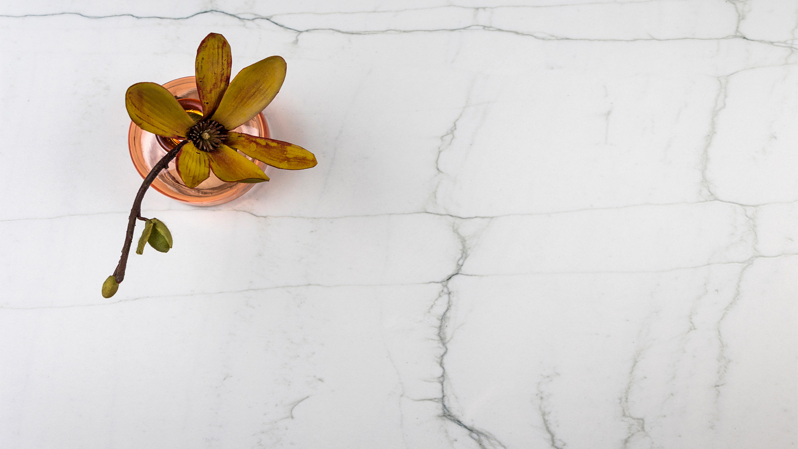 Neolith expands 2019 collection 3